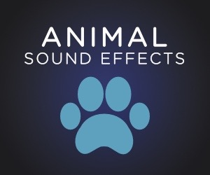 Animals SFX