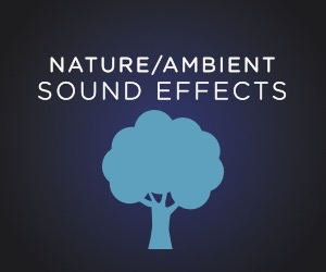 & Ambient/Background MP3 Downloads | SoundsCrate
